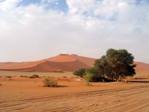 Wüste im NamibNaukluft Park