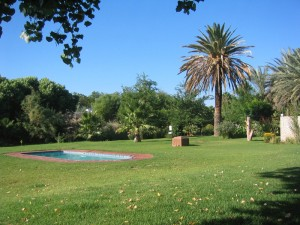 Garten mit Pool in Upington